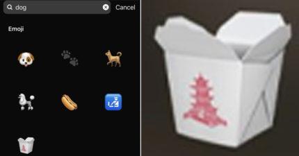 IG遭控辱華?表情圖搜「狗」跳出中式外帶盒 官方出面解釋「關聯性」