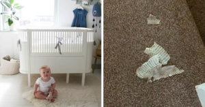 嬰兒床下發現「蛇皮+半隻老鼠」母崩潰!專家警告:會住半年
