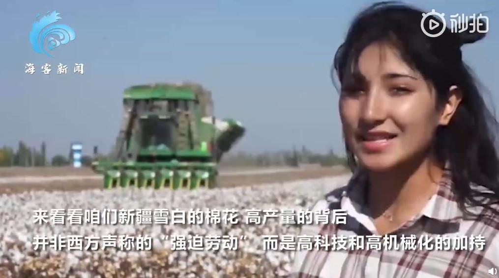新疆棉爆「強迫勞動」?中國Po「機械採摘棉花」急澄清 外媒嗆:你信嗎