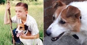 「對狗過敏」新男友要兒子棄狗!17歲少年怒「棄養媽媽」