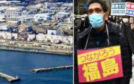日政府宣布「福島核廢水」排進大海!網友驚:不敢吃海鮮了