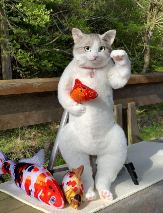 可以背出門散步的貓皇!打開背部「儲物空間」無敵貼心