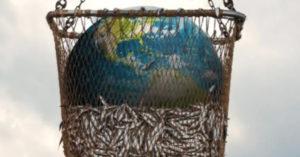 Netflix海洋紀錄片「看完回不去」!觀眾、影評一致崩潰:再也不吃魚了
