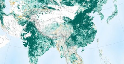 NASA衛星顯示「地球比20年前變綠了」 2國家「努力綠化」:環保是有用的