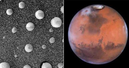 火星發現「300公尺高」蘑菇 哈佛專家驚:真的有生命