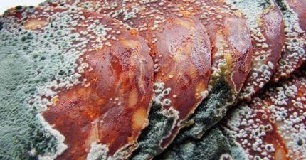 網流行「把生肉放到腐壞」再吃下肚 過來人:吃了很嗨!
