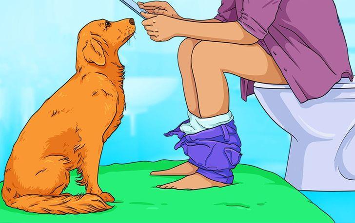 不要罵牠們!7個看似詭異的「狗狗行為原因」 「頭歪一邊」別太緊張