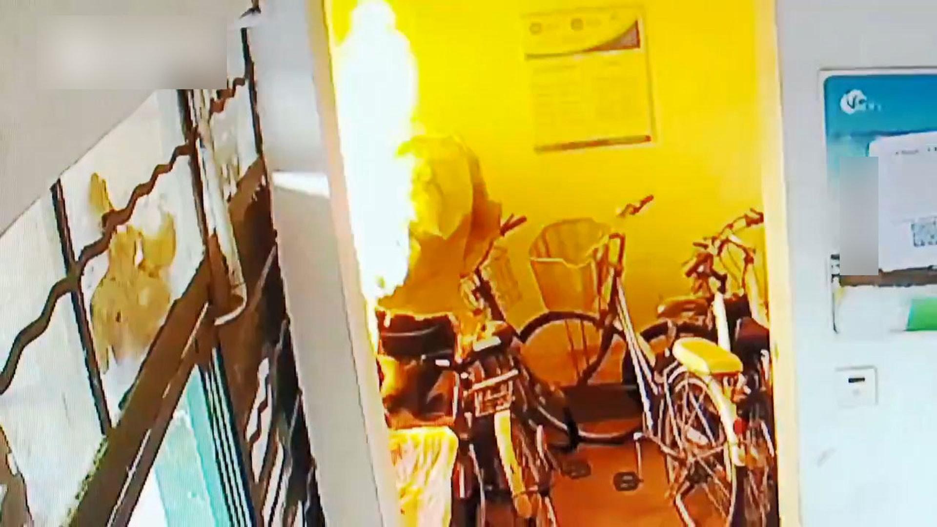 大媽放狗隨地大小便!用鄰居單車套擦尿 怕被發現「放火燒」