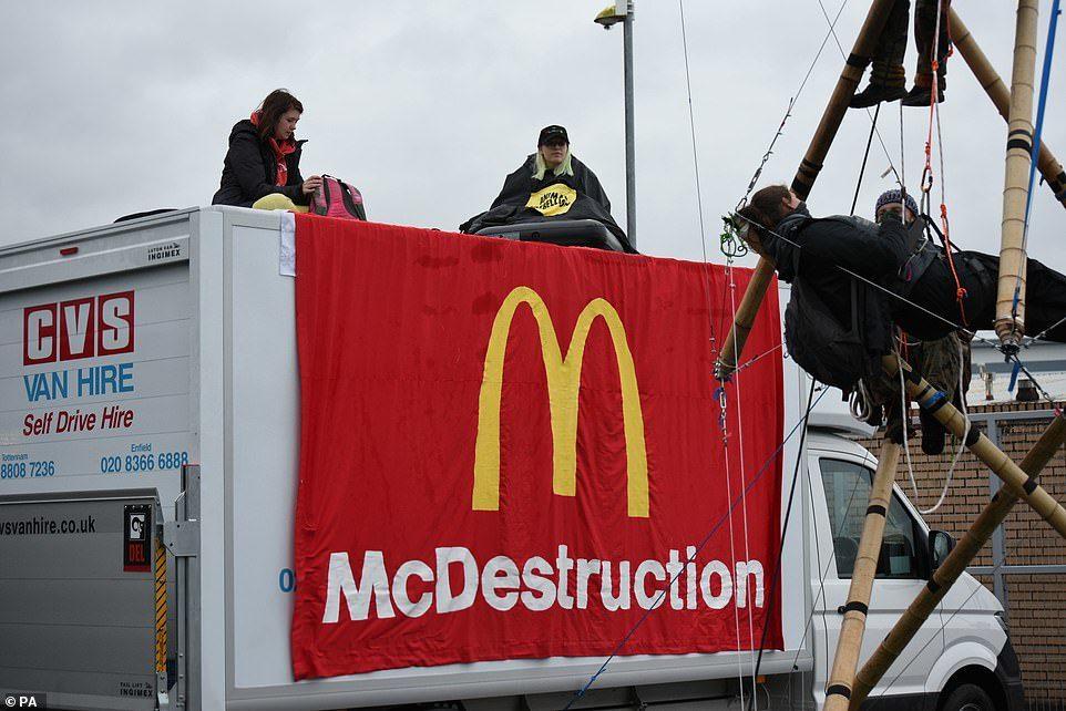 素食者抗議麥當勞