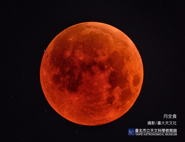 群聚看月亮