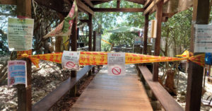關不住?三級警戒照樣趴趴走 國家公園「月抓261件違法入園」