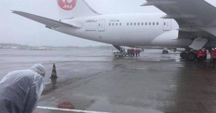 日本「124萬疫苗」抵台!謝長廷機場「雨中90度鞠躬」