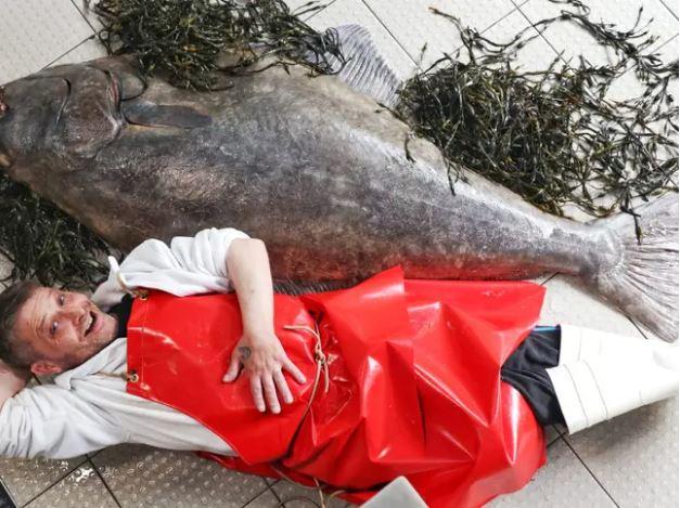 捕獲「比人還高」世界最大比目魚!靠4壯漢才搬回展示