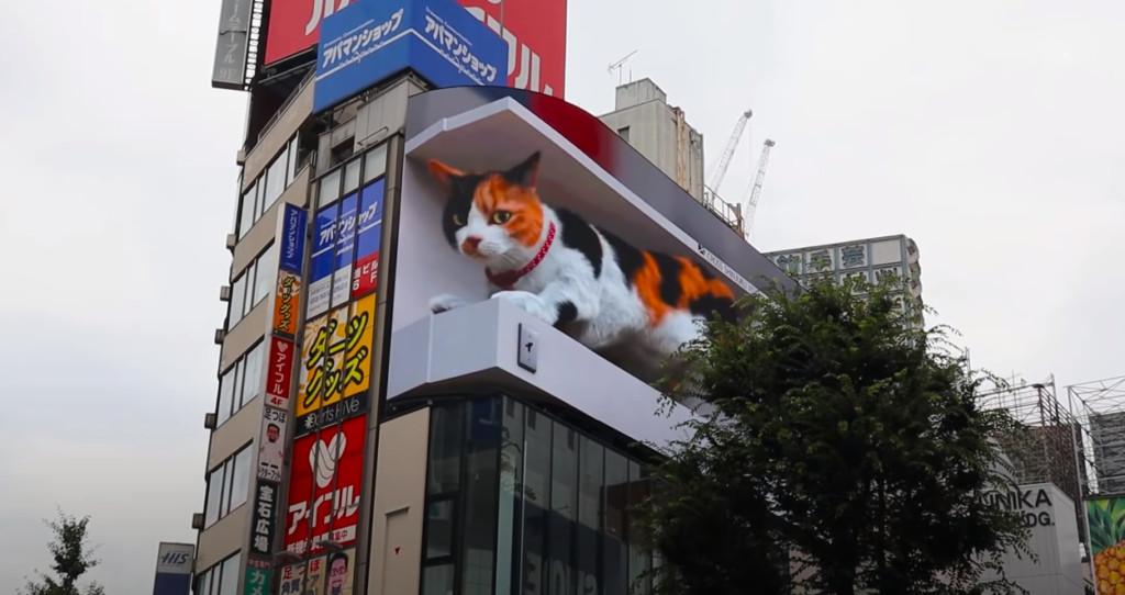 东京3D巨猫